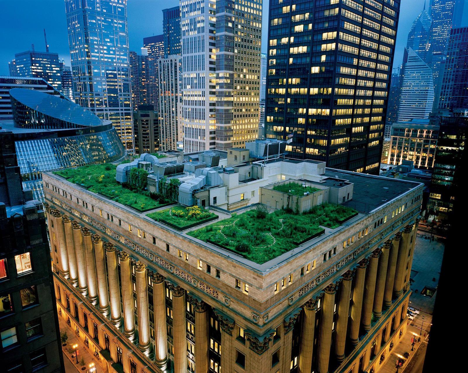 groene-daken-verspreiden-zich-over-de-wereld-4150